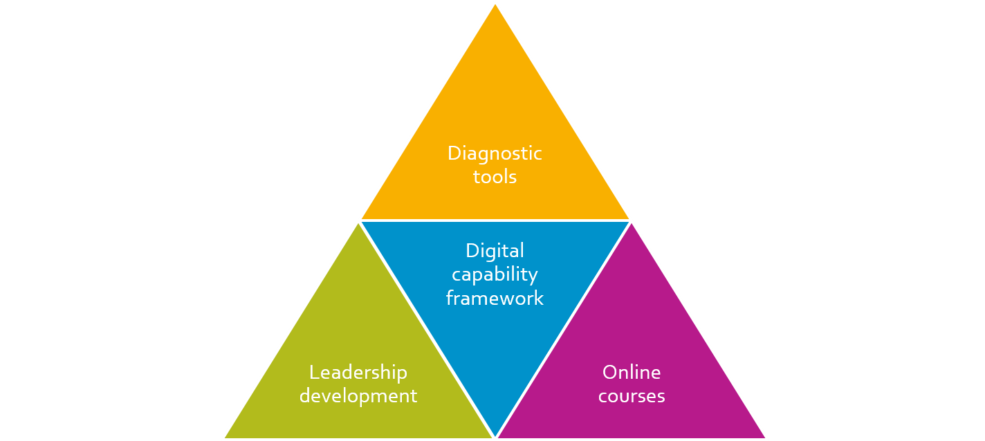 Conceptual structure of digital capability service